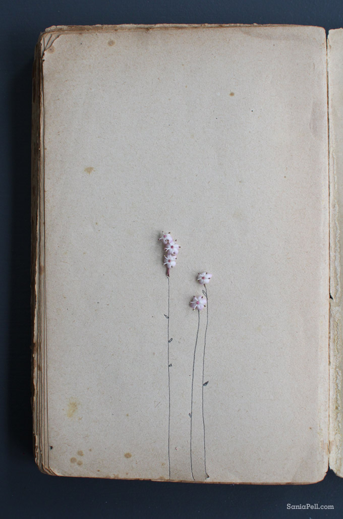 drawn flowers on book by sania pell
