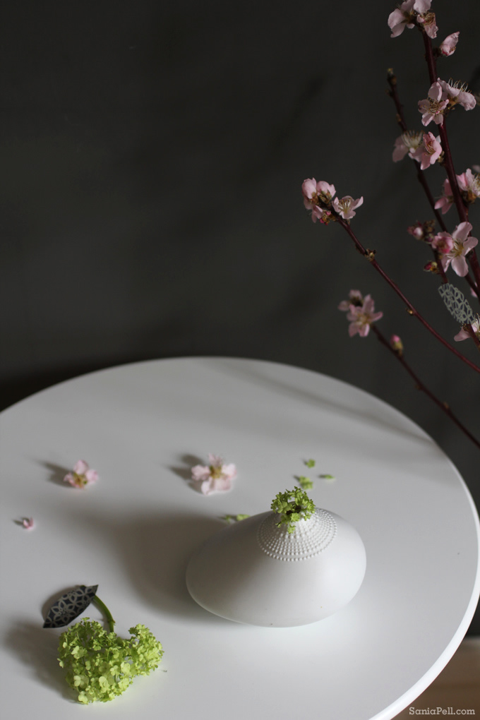 Spring blossom with Rosenthal vase by Sania Pell
