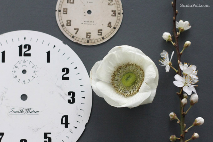clock face coaster by sania pell