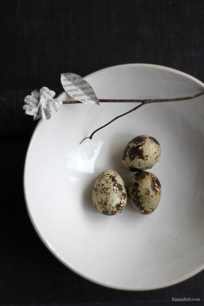 quail's eggs by Sania Pell