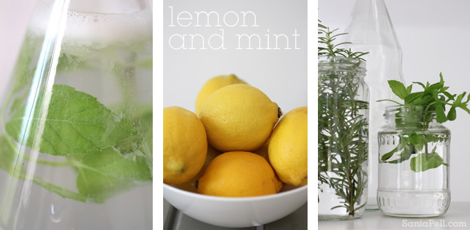 mint lemonade by Sania Pell