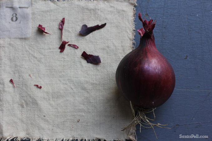 Homemade red onion dye by Sania Pell