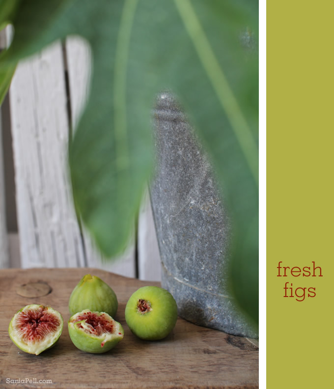 Homegrown figs in Croatia by Sania Pell